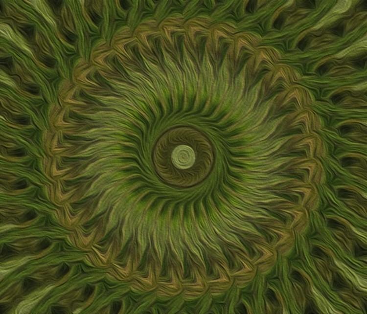 Painted Kaleidoscope 10
