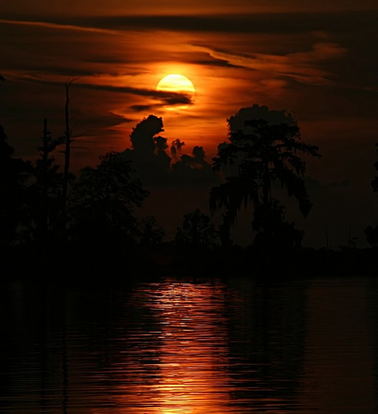 Scary Swamp Sunset