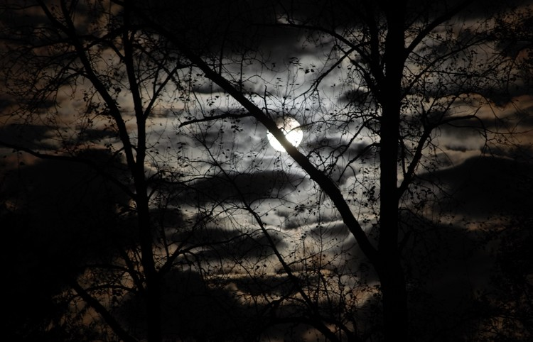 moon-1a