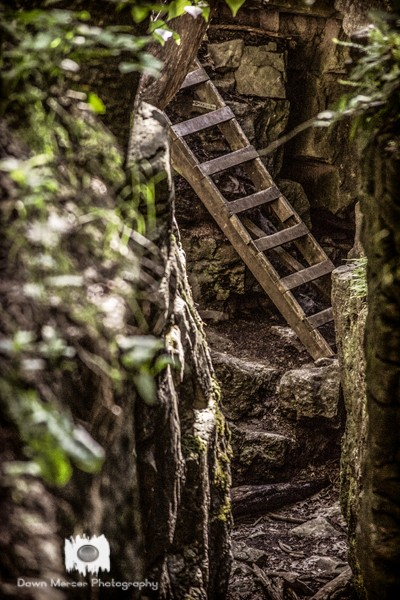 Ladder To The Caves