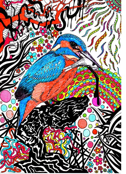 Kingfisher doodle