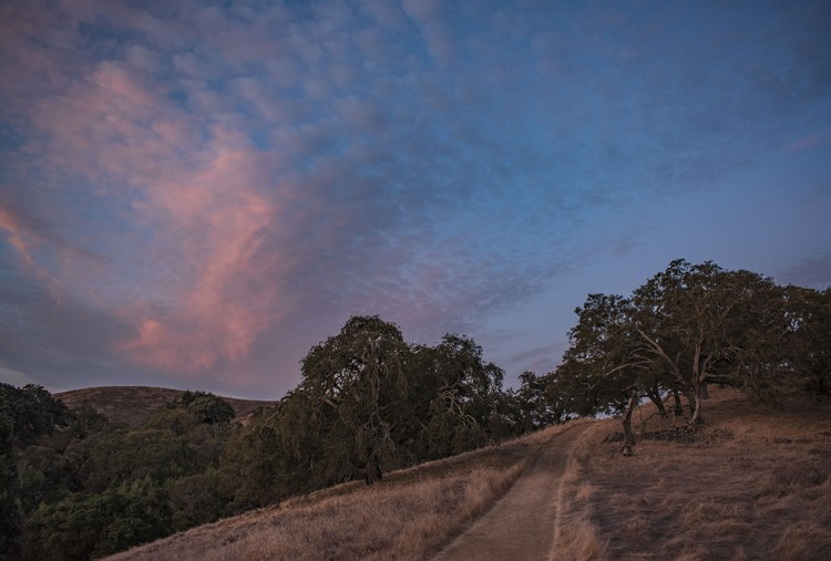 Fire Trail at First Light - October 2019