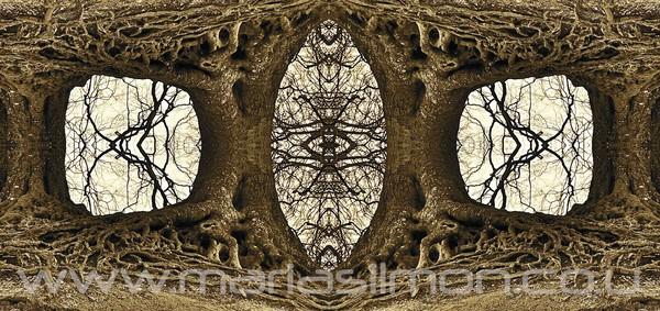 'Ancestor Forest Portal'