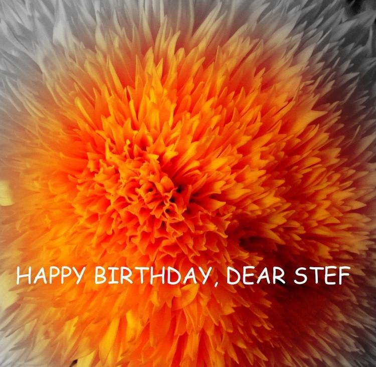 HAPPY BIRTHDAY, DEAR STEF !!!