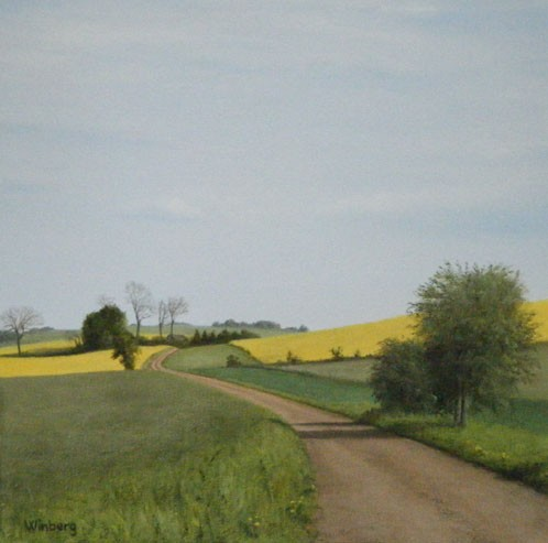 Road over rapeseed field