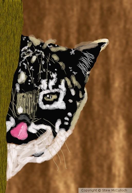 Bobcat  P237