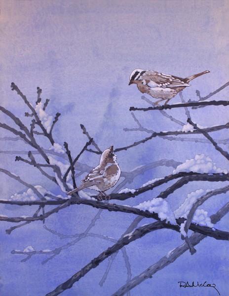Talkin' Birds