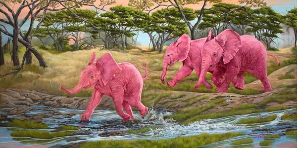 A Splash of Pink