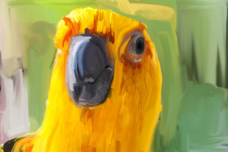 parrothead painting