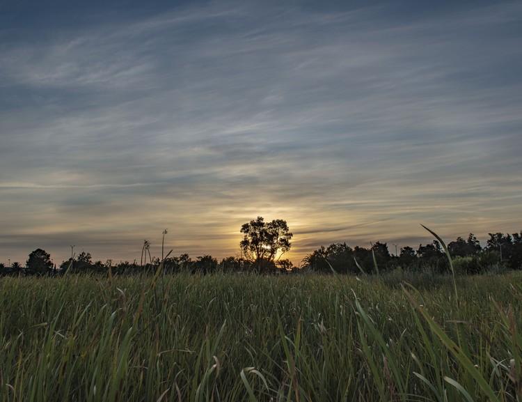 Dawn Arrives over the Marsh - August 2019