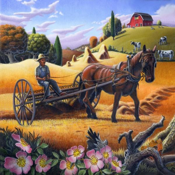 Farmer Raking Hay Field - Square Format Art