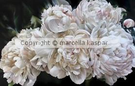 Marcella kaspar Heavenly 137cmx214cm oil on linen 2019
