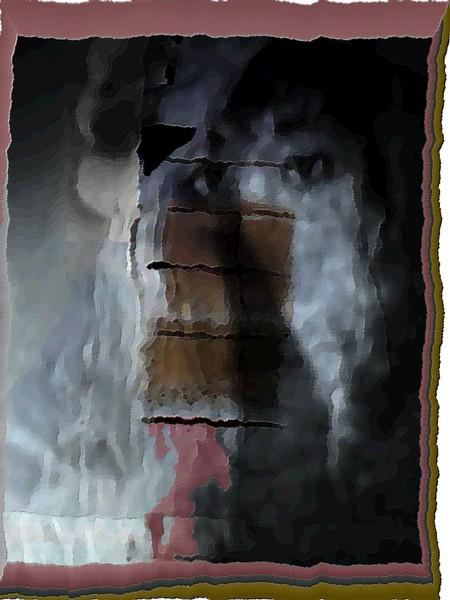 Chimney At Homestead #13