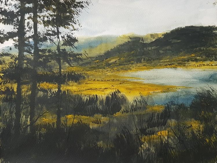Osprey Viewpoint, Dodd Wood, Bassenthwaite