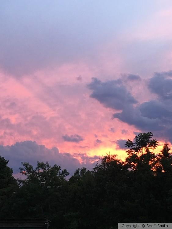 Sunset in magenta
