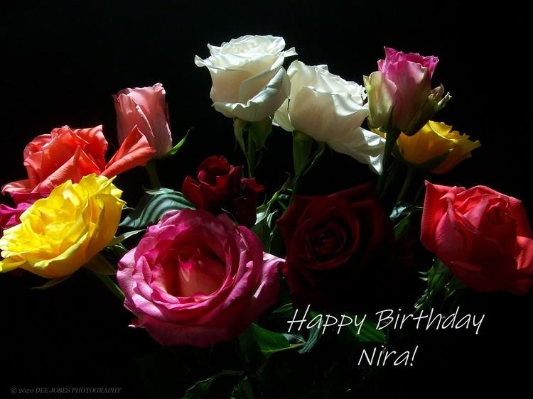 Happy Birthday Nira!