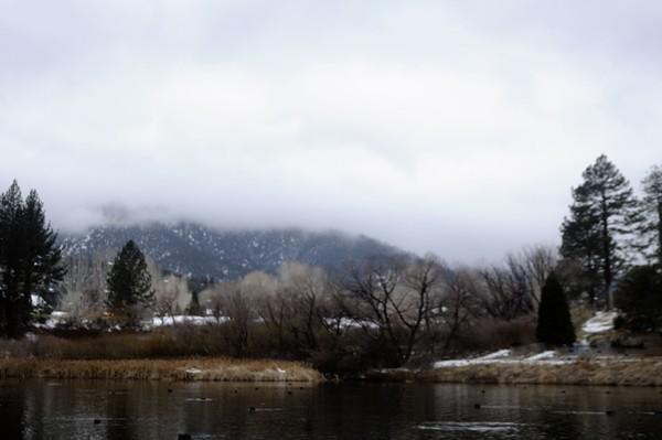 Fern's lake
