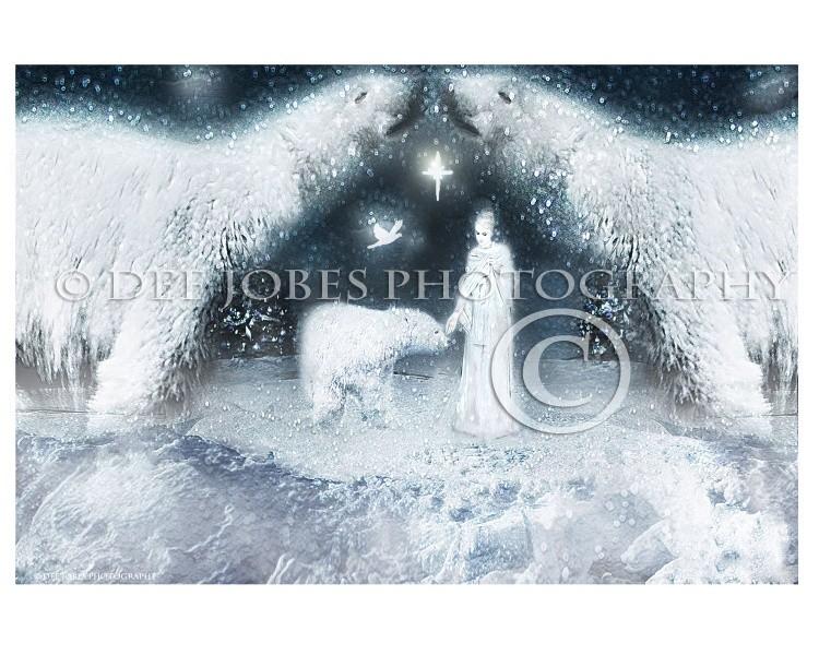 Polar Princess Photo Art